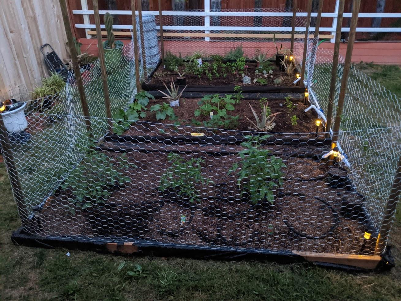 Garden fences