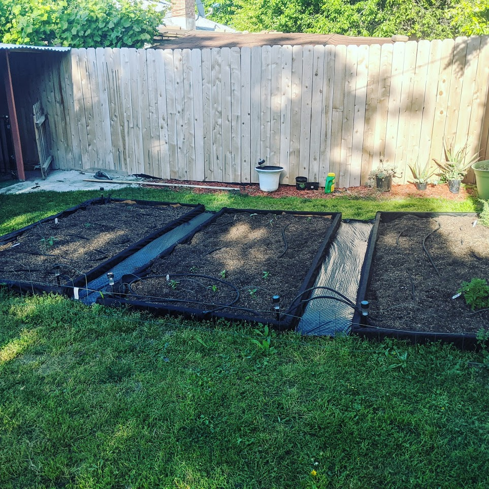 raised bed gardens complete